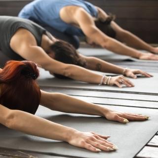 Yogahold for enhver smag